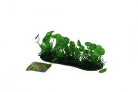 Banana Lilly Covered Pad 10cm