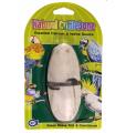 Natural Cuttlebone