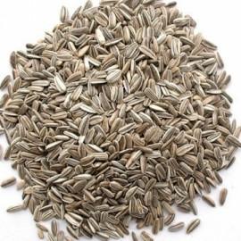 Grey Sunflower Seed