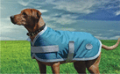WeatherBeeta Landa Dog Coat
