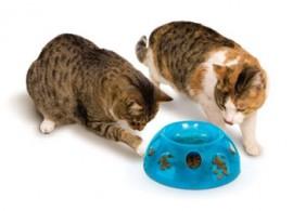 Smart Cat Food Dish