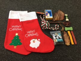 Filled Xmas Stocking for Dogs