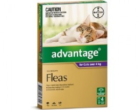 Advantage for Cats over 4 kg