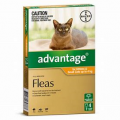 Advantage for Kittens & Cats up to 4kg