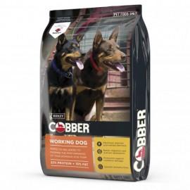 Cobber Working Dog .